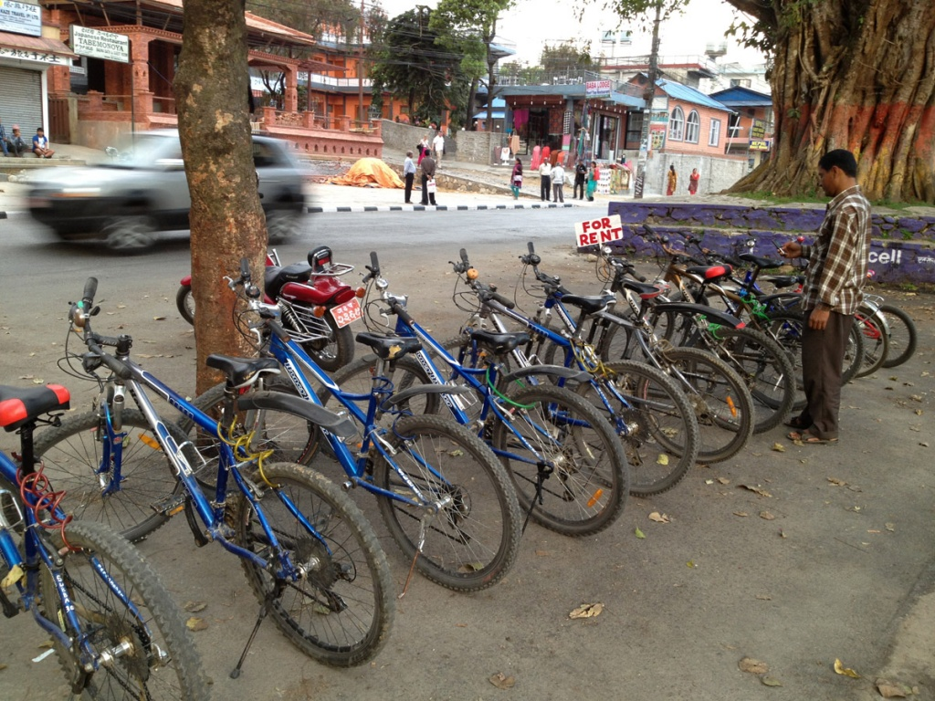 Photo of Bicycle Rental